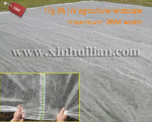 36M pp nonwoven fabric